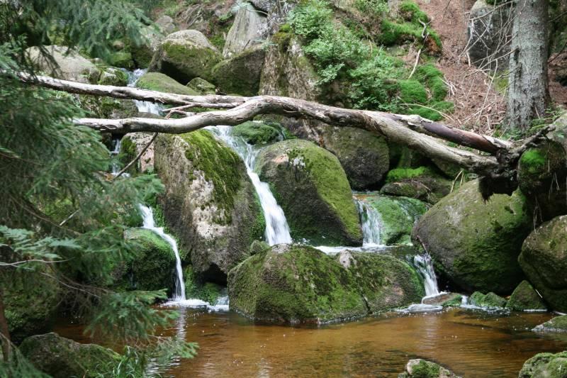 Albert und das weisse Reh Wasserfall