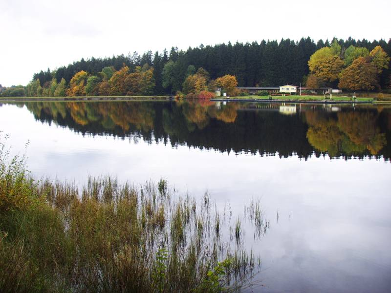 Schwimmbad Harzer Teich